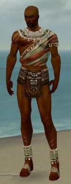 Ritualist Exotic Armor M gray chest feet front.jpg