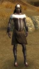 Wandering Priest.jpg