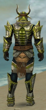 Warrior Elite Sunspear Armor M dyed back.jpg