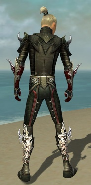 Assassin Deldrimor Armor M gray back.jpg