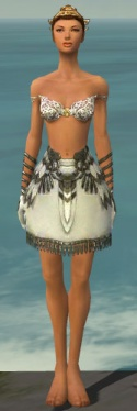 Paragon Sunspear Armor F gray arms legs front.jpg
