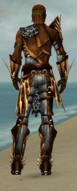 Ranger Elite Sunspear Armor M dyed back.jpg