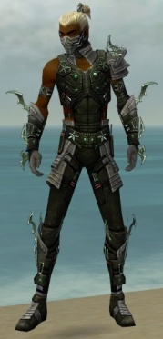 Assassin Elite Luxon Armor M gray front.jpg