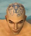 Monk Istani Armor M gray head front.jpg