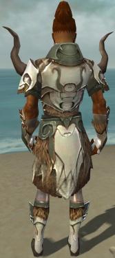 Paragon Norn Armor M gray back.jpg