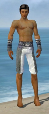 Elementalist Luxon Armor M gray arms legs front.jpg