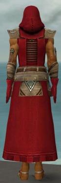 Dervish Istani Armor M dyed back.jpg