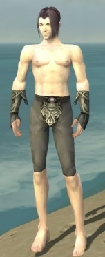 Elementalist Monument Armor M gray arms legs front.jpg