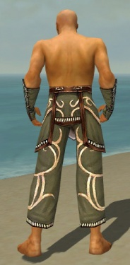 Monk Shing Jea Armor M gray arms legs back.jpg