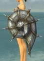Summit Warlord Shield