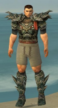 Warrior Elite Luxon Armor M gray chest feet front.jpg
