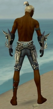 Assassin Asuran Armor M gray arms legs back.jpg