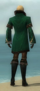 Mesmer Norn Armor M dyed back.jpg