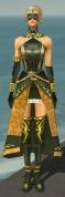 Mesmer Sunspear Armor F gray front.jpg