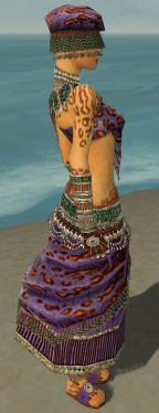 Ritualist Elite Exotic Armor F dyed side alternate.jpg