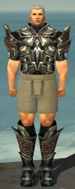 Warrior Elite Kurzick Armor M gray chest feet front.jpg