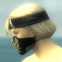 Assassin Kurzick Armor M dyed head side.jpg