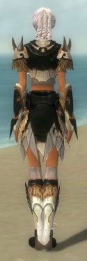 Paragon Norn Armor F dyed back.jpg