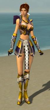 Elementalist Deldrimor Armor F dyed front.jpg
