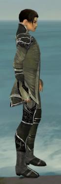 Elementalist Shing Jea Armor M gray side.jpg
