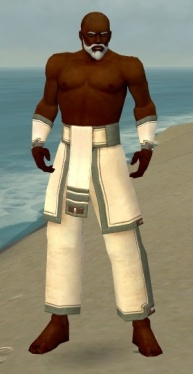 Monk Sacred Armor M gray arms legs front.jpg