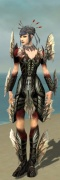 Necromancer Primeval Armor F gray front.jpg