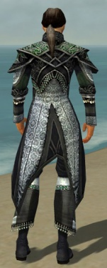 Elementalist Elite Luxon Armor M dyed back.jpg