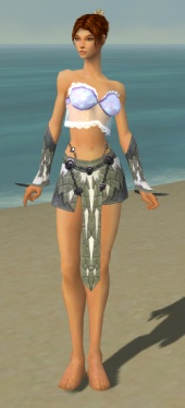 Elementalist Iceforged Armor F gray arms legs front.jpg