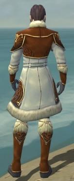 Elementalist Norn Armor M dyed back.jpg