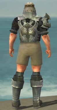 Warrior Elite Templar Armor M gray chest feet back.jpg