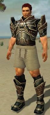 Warrior Kurzick Armor M gray chest feet front.jpg