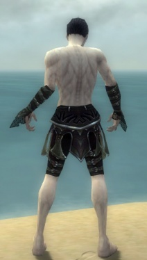 Necromancer Elite Cabal Armor M gray arms legs back.jpg
