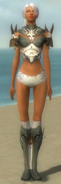 Paragon Norn Armor F gray chest feet front.jpg
