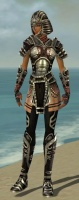 Warrior Ancient Armor F gray front.jpg