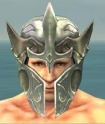 Warrior Elite Templar Armor M gray head front.jpg