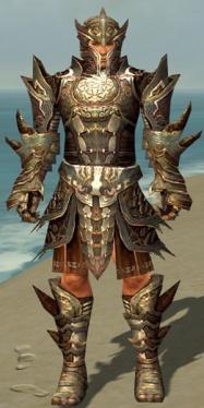 Warrior Monument Armor M gray front.jpg