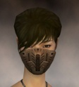Assassin Elite Imperial Armor F dyed head front.jpg