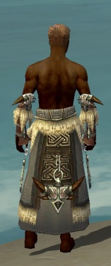 Dervish Norn Armor M gray arms legs back.jpg