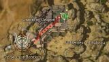 Larmor map.jpg