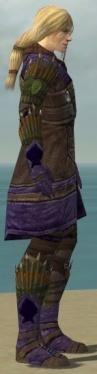 Ranger Elite Druid Armor M dyed side.jpg
