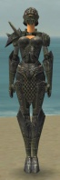 Warrior Elite Platemail Armor F gray front.jpg