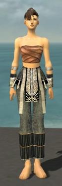 Monk Elite Sunspear Armor F gray arms legs front.jpg