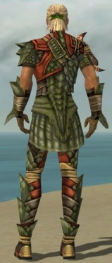 Ranger Elite Drakescale Armor M gray back.jpg