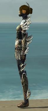 Assassin Asuran Armor F gray side.jpg
