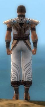 Monk Asuran Armor M dyed back.jpg