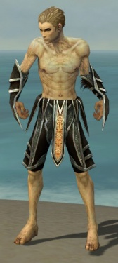 Necromancer Elite Sunspear Armor M gray arms legs front.jpg