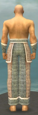 Monk Woven Armor M gray arms legs back.jpg