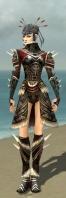 Necromancer Norn Armor F gray front.jpg