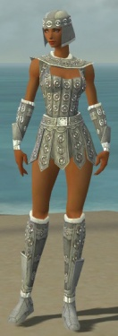 Warrior Ascalon Armor F gray front.jpg