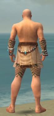 Monk Labyrinthine Armor M gray arms legs back.jpg